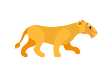 Side View Of Standing Lioness, Wildlife Animal, Single Mammal And Mascot Of Zoo. Predator And Dangerous Cat, Flat Element Of Pride, Closeup Of Beast Vector