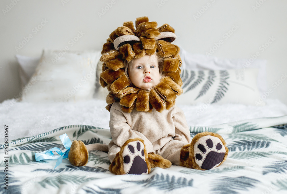 Fototapeta Handsome plump little child in a lion costume.