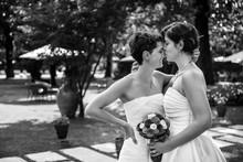 Matrimonio Samesex