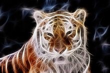 Fractal Colorful Portrait Of A Wild Tiger On A Contrasting Black Background