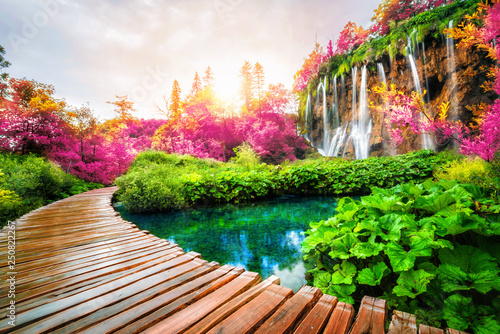 Papiers peints Jardin Beautiful wooden path in Plitvice Lake, Croatia.