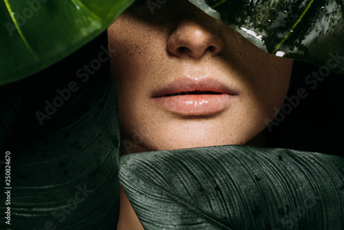 Obraz cropped view of girl with freckles posing with green tropical leaves - fototapety do salonu