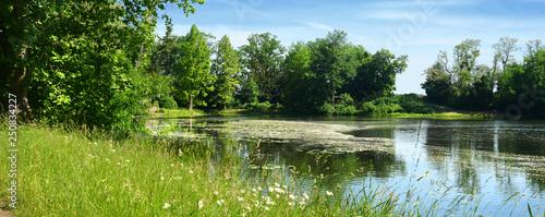 Fotografía Parklandschaft