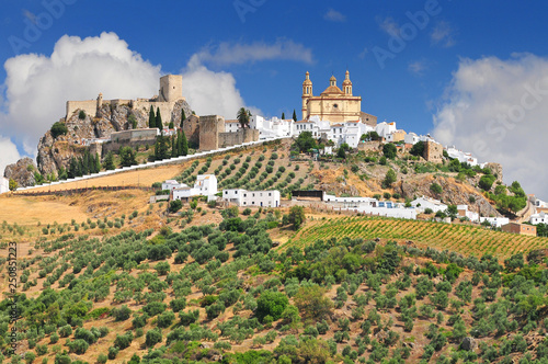 Olvera is a white village (pueblo blanco) in Cadiz province, Andalucia, Spain Wallpaper Mural