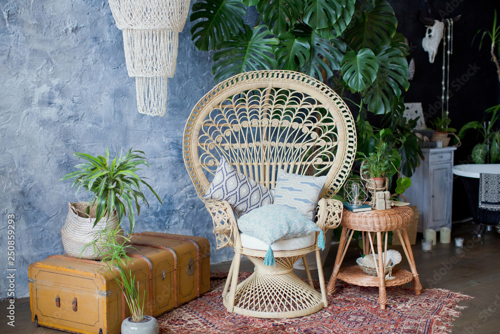 Fototapety, obrazy: Rattan peacock chair and big monstera plant in loft room