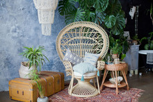 Rattan Peacock Chair And Big Monstera Plant In Loft Room