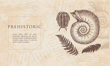 Prehistoric. Ancient Ammonites Fern, Trilobite. Archeology And Paleontology Concept. Cambrian Art. Renaissance Background. Medieval Manuscript, Engraving Style
