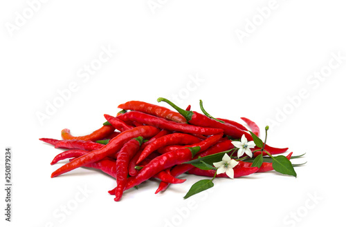 Fresh red chili pepper with flowers and leaves on a white background
