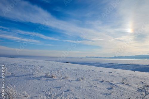 Foto auf Gartenposter Antarktika Snow desert small branches covered with frost. mystical blue sky. on the horizon of the mountain. frosty clear sunny day