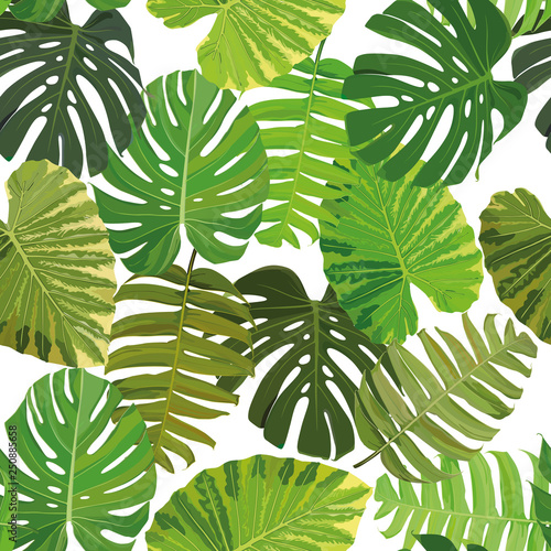 Fototapety, obrazy: Seamless background with tropical leaves