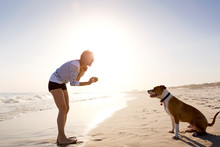 Woman Playing Fetch With Dog O...