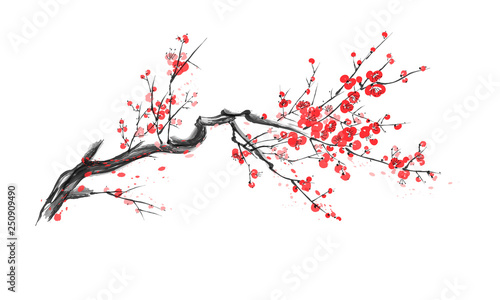 Realistic sakura blossom isolated on white background. Poster Mural XXL