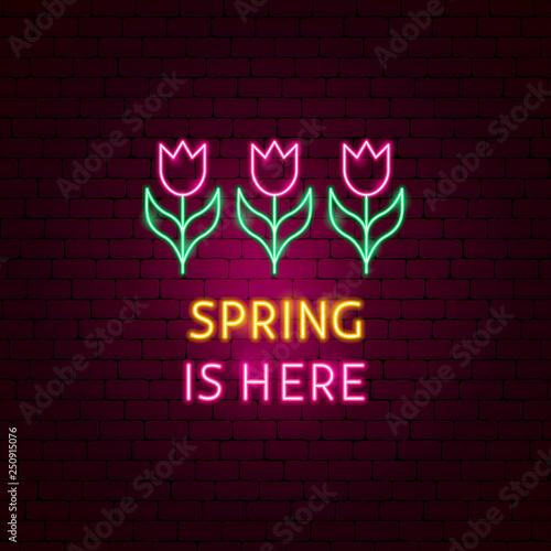 Fotografie, Obraz  Spring is Here Neon Label