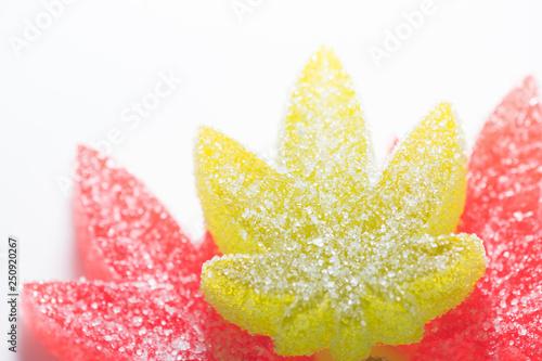 Cuadros en Lienzo  Weed Leaf Gummies Macro