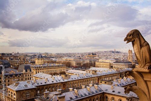 Elevated view of Paris cityscape   - 250938636