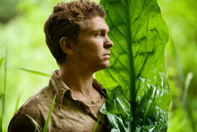 Man With Leaf Standing In Rainforest