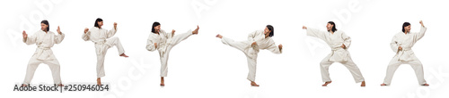 Garden Poster Martial arts Karate fighter isolated on white