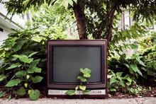 Abandoned TV Set Next To Tree