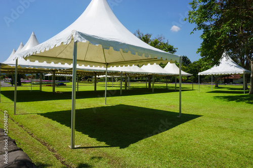 Obraz white tent with green grass on the garden park with shed - photo indonesia bogor - fototapety do salonu