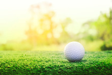 Golf Ball Is On A Green Lawn In A Beautiful Golf Course
