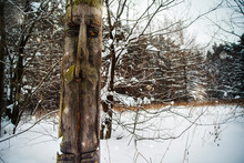 Carved Totem Face On Tree In Snowy Forest