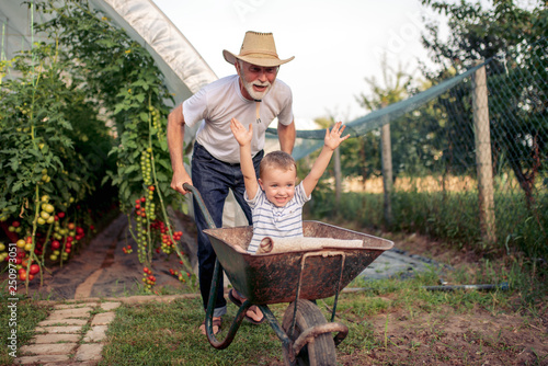 Fotografía  Grandfather and his grandson in greenhouse