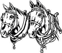 Draft Horses Vector Illustration