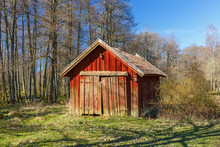 Red Wooden Shed In A Woodland