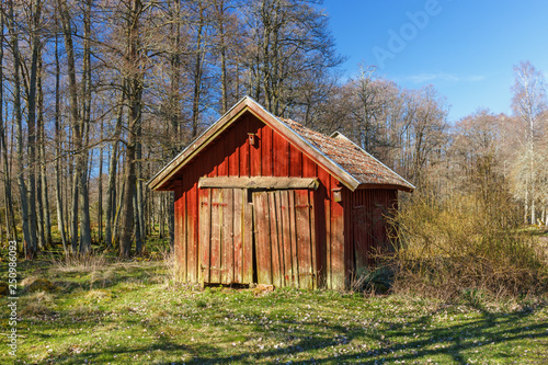 Fotografie, Tablou Red wooden shed in a woodland