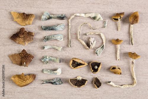 Photo Psychoactive dry magic mushrooms.