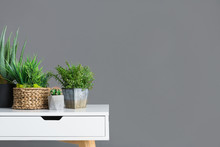 Stylish Table With Different Houseplants On Grey Wall