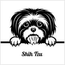 Shih Tzu - Peeking Dogs - - Br...