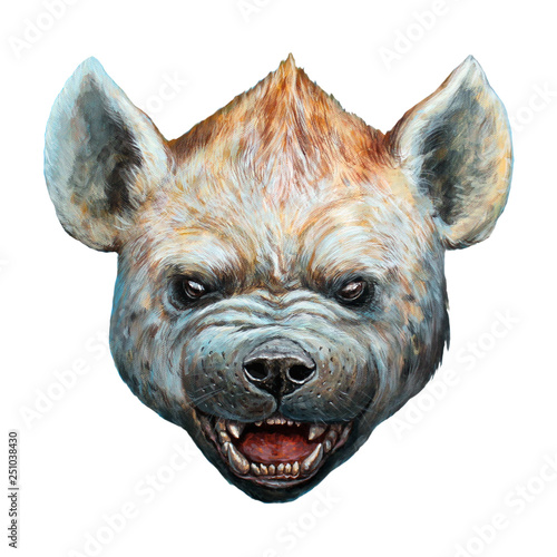 Fototapeta Spotted hyena portrait. Hyena roaring illustration.