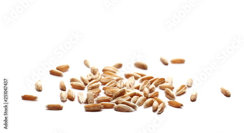 Fényképezés  Wheat spelt grain heap isolated on white background