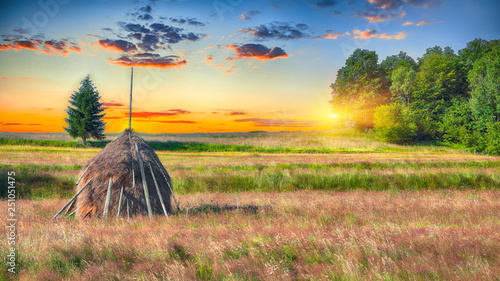 Fotografía  Beautiful countryside landscape with forested hills and haystacks on a grassy ru