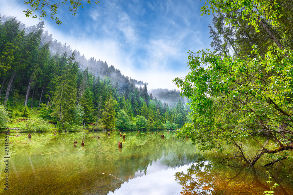 Fototapety, obrazy: Majestic summer view of mountain lake Lacul Rosu or Red Lake or Killer Lake