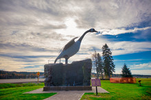 Famous Wawa Giant Goose Statue...
