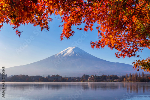 Fototapety, obrazy: Fuji Mountain with red maple in Autumn at Kawaguchiko Lake, Japan. Mount Fuji is the highest mountain in Japan