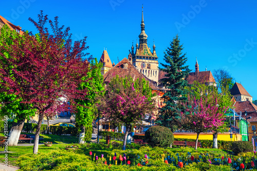 Fényképezés Ornamental park with colorful flowers in city center, Sighisoara, Romania