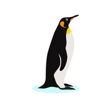 King Penguin Icon, Isolated On...