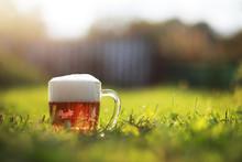 Glass Mug Light Foam Beer. Spr...