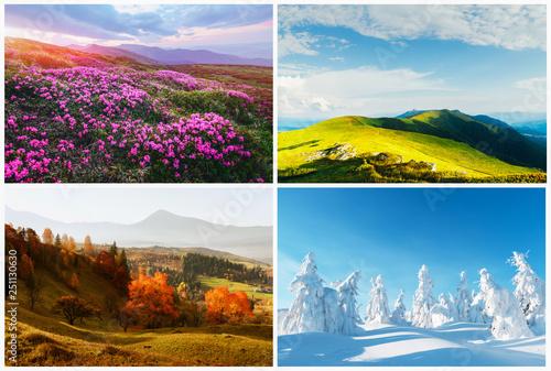 Cuadros en Lienzo Four season nature landscapes in mountains. Natural backgrounds