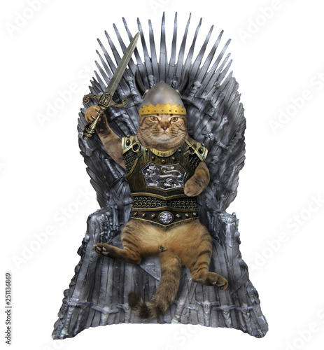 The cat knight in a helmet and a cuirass with a sword sits on the iron throne Fototapet