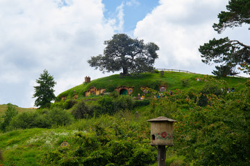 Hobbiton village in New zealand with bilbon's house