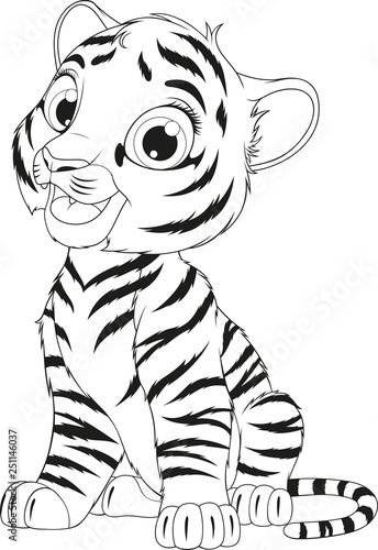Photo Funny cute tiger cub