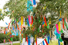 Travelers People Join And Writing Wishes On Paper And Hang On Bamboo Tree In Tanabata Or Star Japanese Festival At Japan Village