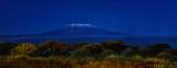 Fototapeta Sawanna - Panoramic, night scenery of Mount Kilimanjaro, snow capped highest african mountain, lit by full moon against deep blue night sky. Savanna view, Amboseli national park, Kenya.