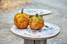 Warty Pumpkins. Bright Yellow ...