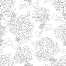 Seamless Pattern With Hydrange...