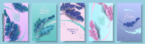 Obraz Vector banners set of banana tropic leaf - fototapety do salonu